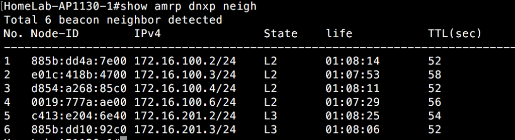 Show AMRP DNXP Neighbor - Switch 1