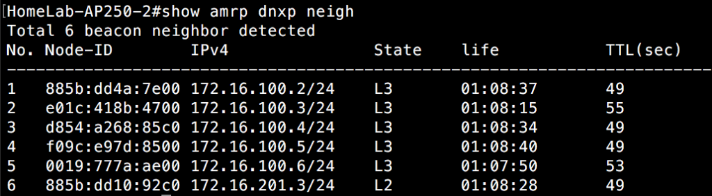 Show AMRP DNXP Neighbor - Switch 2