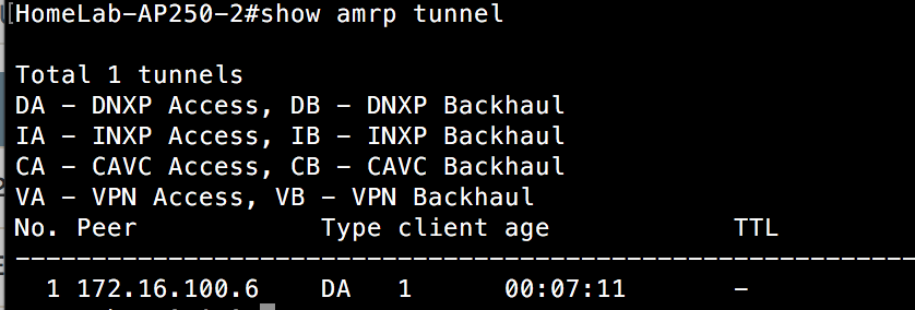 Show AMRP Tunnel - AP250 Switch 2