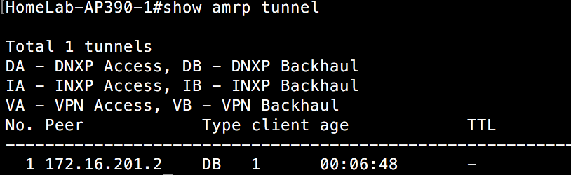 Show AMRP Tunnel - AP390 switch 1